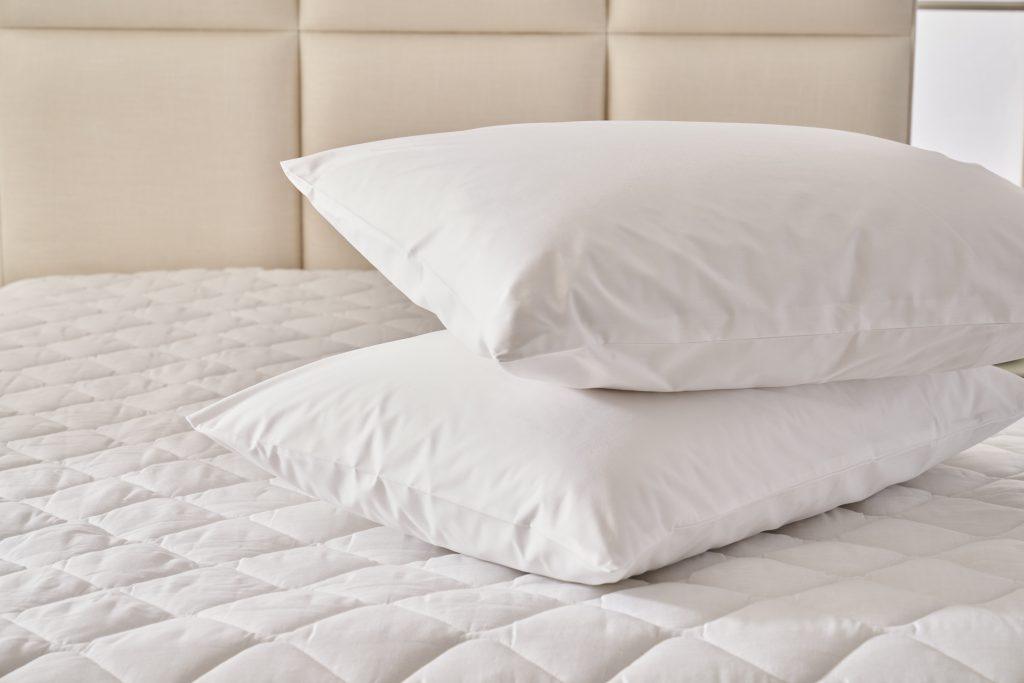 Pillow Protector Shop Range 1